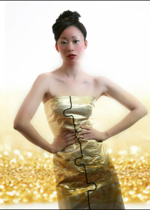 Cover dress 1