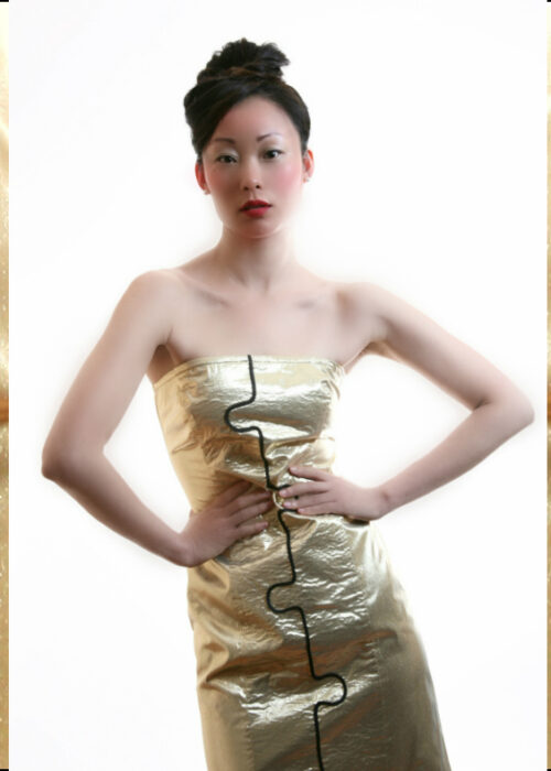Cover dress 3